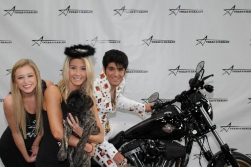 Lily with Elvis